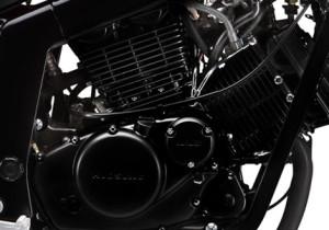 Comet GT 250R 2012 Motor