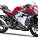NINJA 250R 2013 Vermelho/Branco